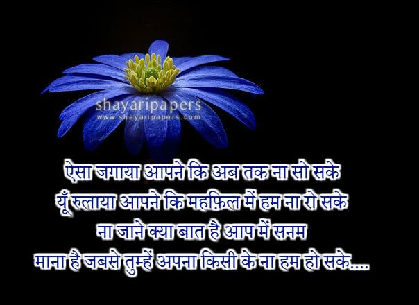 love shayari images hd