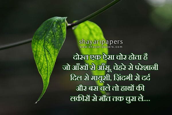 cute dosti shayari status for facebook pictures