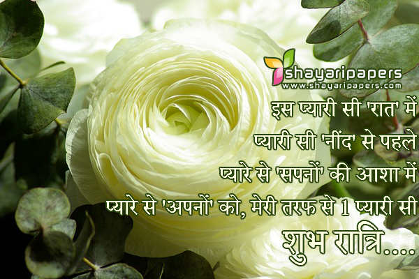 pyari si good night shayari sms