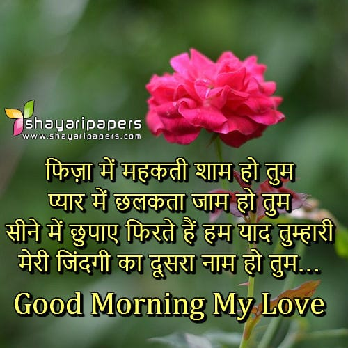 Good Morning Wallpaper With Love Sayari : Good Morning Love Shayri Hd Image - impremedia.net